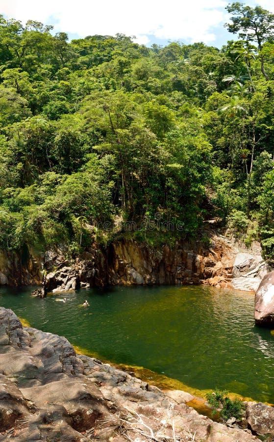 在火轮子的供游泳的深水潭在Eungella国家公园落我 免版税图库摄影