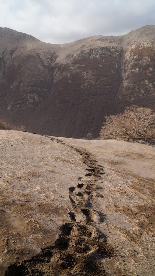 在灰的脚印在火山在别墅La苦味液,阿根廷附近的卡尔布科火山爆发以后 图库摄影