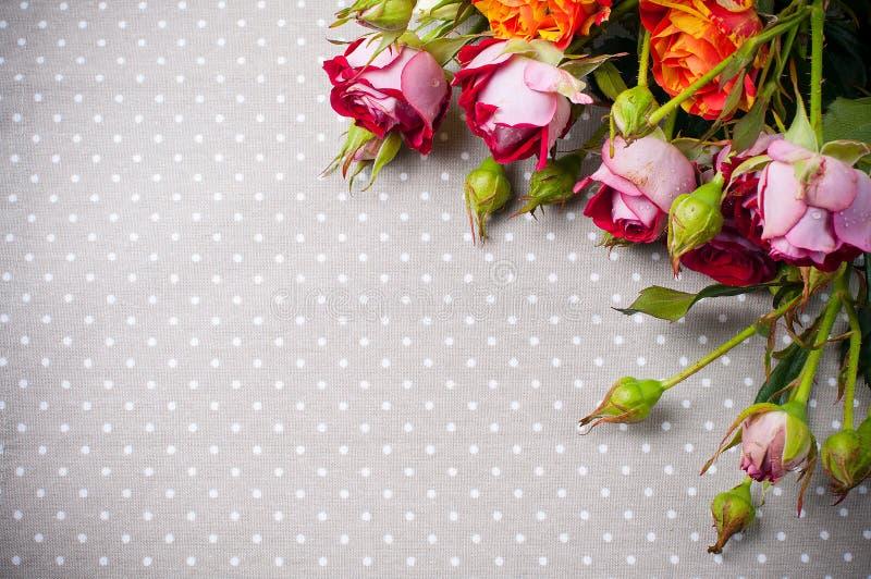 在灰色亚麻制织品的多彩多姿的玫瑰 免版税库存照片