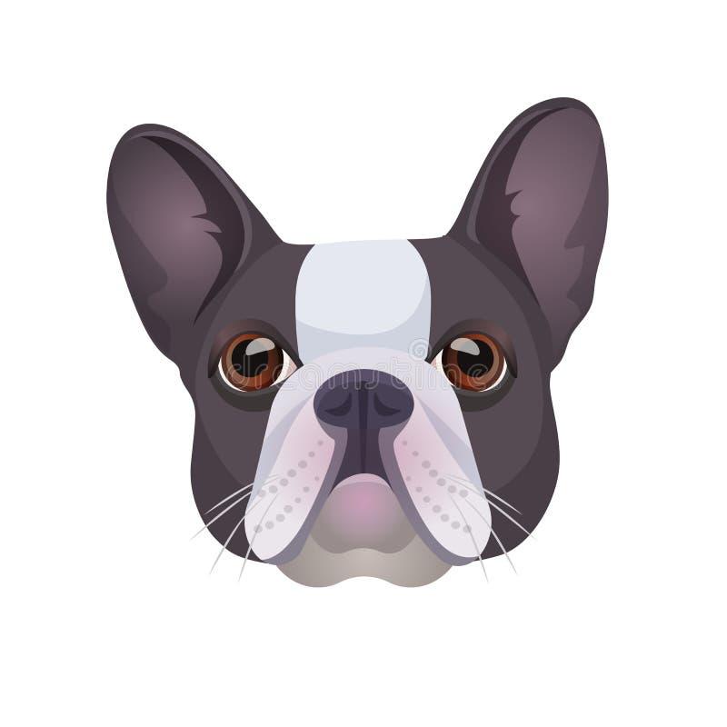 在灰色和白色传染媒介现实例证上色的牛头犬面孔 库存例证