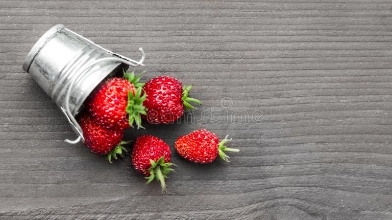 在灰色木背景是一个桶用草莓倾吐地方题字拷贝空间的红色莓果 免版税库存照片