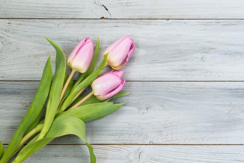 在灰色木背景,与拷贝空间的顶视图的桃红色郁金香 免版税图库摄影