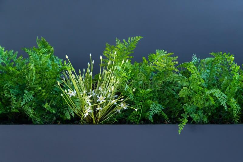 在灰色背景的绿色和白色人造花与空间 免版税库存照片