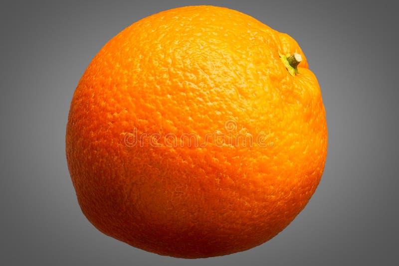 在灰色背景隔绝的新鲜的橙色果子 免版税库存图片