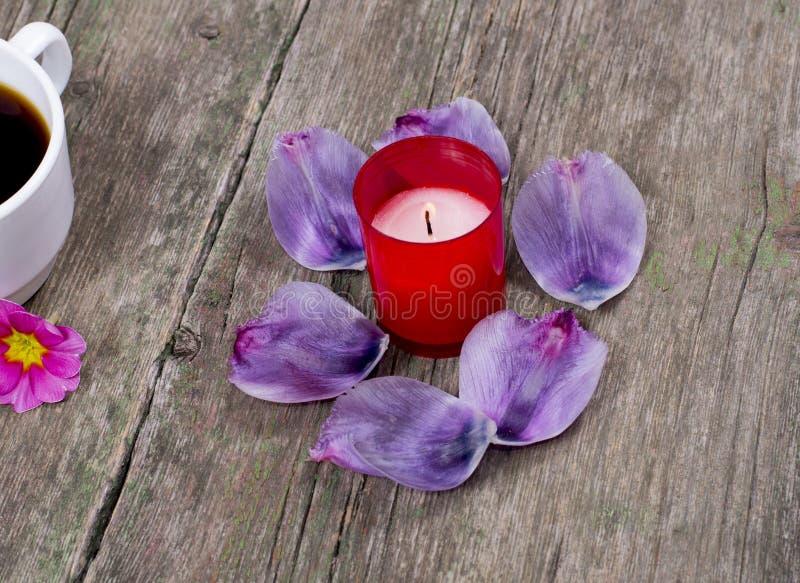 在灼烧的红色蜡烛附近的淡紫色瓣 免版税库存图片