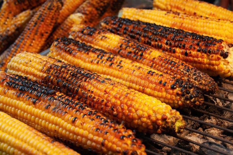 在炭烬的玉米 库存照片