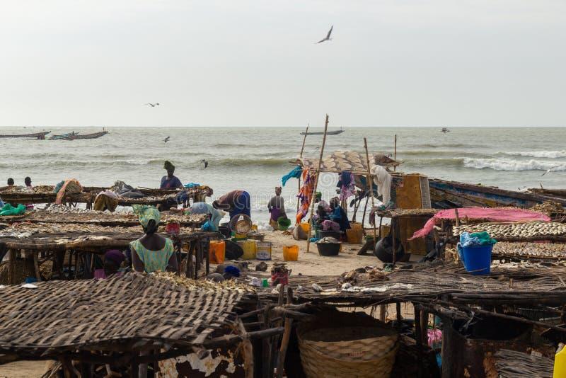在烘干鱼之间的妇女在滩基 免版税库存照片