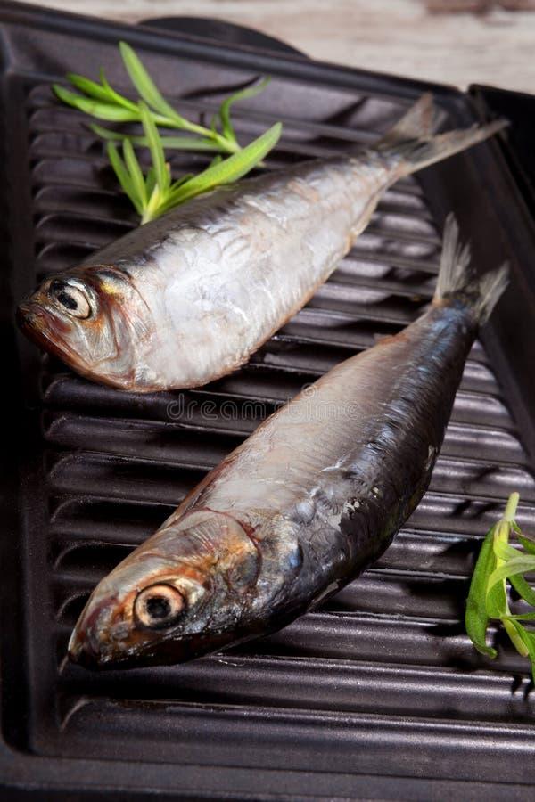 在烘烤的鲜鱼 免版税库存照片