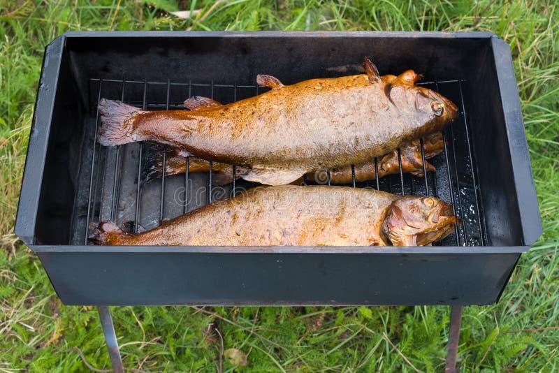 在烟箱的熏制的鳟鱼 免版税库存照片
