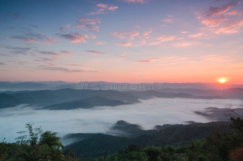 在热带山的大角度看法与及早白色雾 免版税库存图片