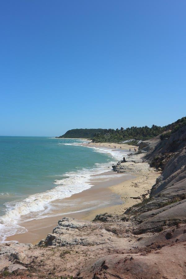 在热带巴西海滩的峭壁 库存图片