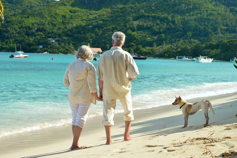 在热带手段的年长夫妇休息 免版税库存图片