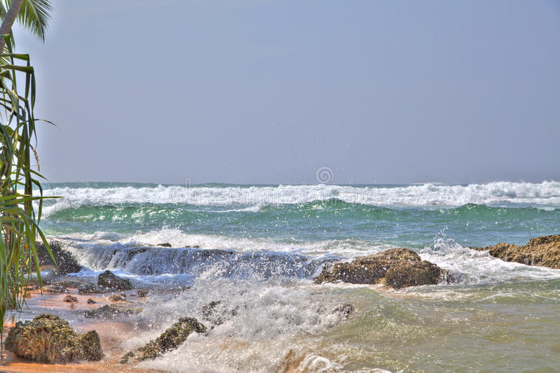 在热带海岛斯里兰卡的浪漫沿海风景 免版税库存图片