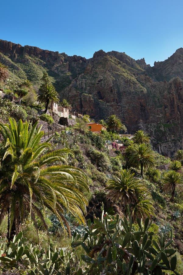 在热带海岛特内里费岛,金丝雀上的山风景在西班牙 免版税库存照片