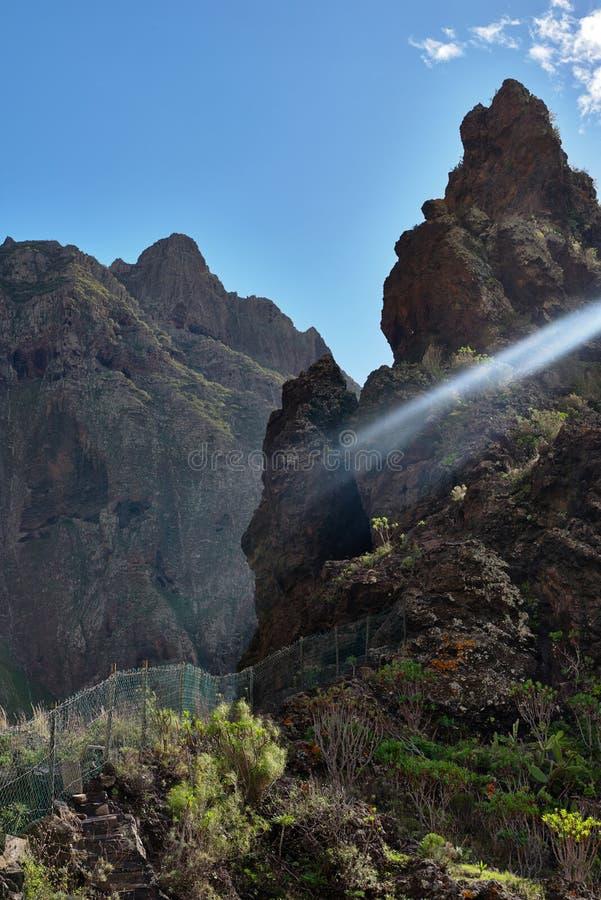 在热带海岛特内里费岛,金丝雀上的山风景在西班牙 免版税库存图片