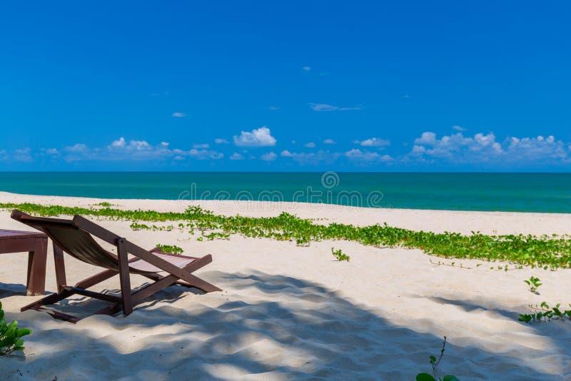 在热带海滩的海滩睡椅和棕榈树前景,天堂海岛假日和放松 库存图片