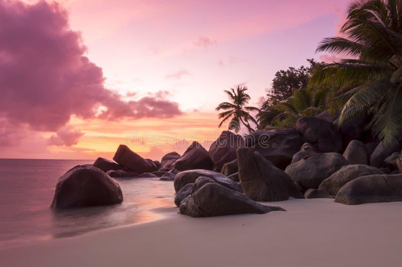 在热带海滩-塞舌尔群岛的日落-自然背景 免版税库存照片