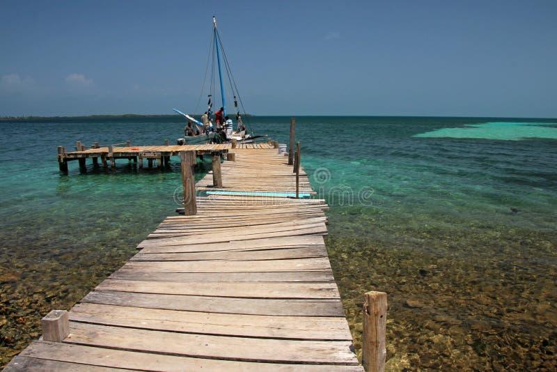 在热带海滩的木码头用绿松石水,烟草Caye,伯利兹 免版税库存图片