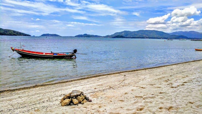 在热带海滩靠码头的小船 库存图片