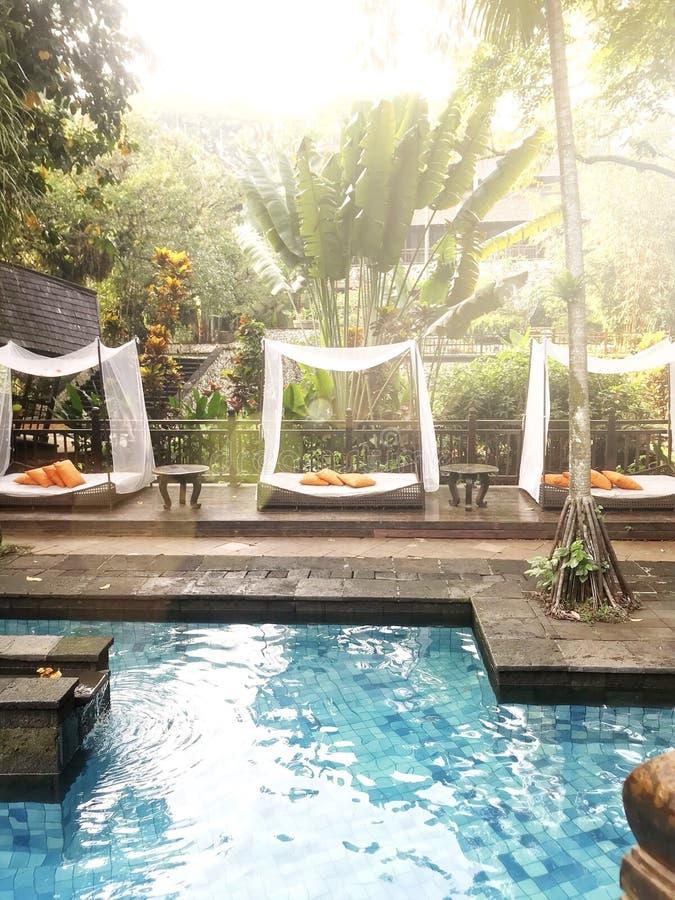 在热带游泳场有床椅子的和橙色枕头的放松的夏天休假在阳光下 免版税图库摄影
