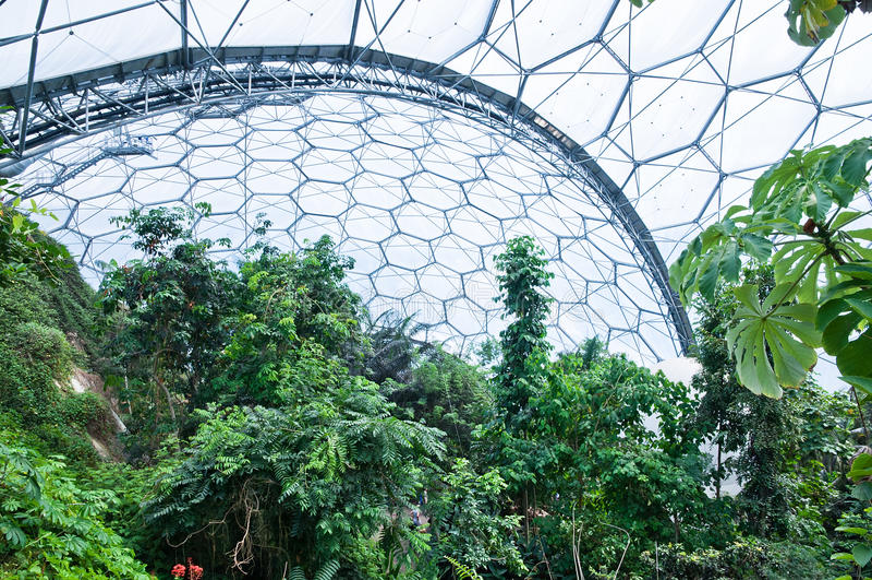 在热带的项目里面的生物群系伊甸园 免版税图库摄影