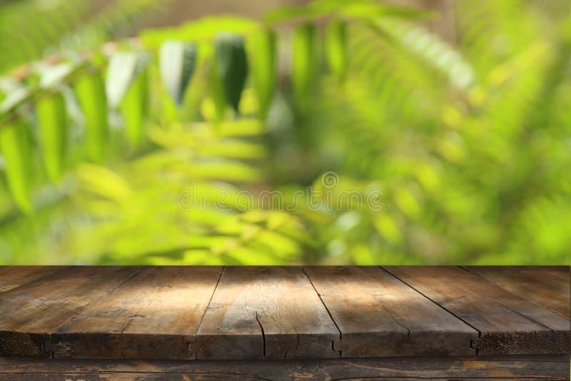 在热带绿色花卉背景前面的木桌 对产品显示和介绍 免版税库存照片
