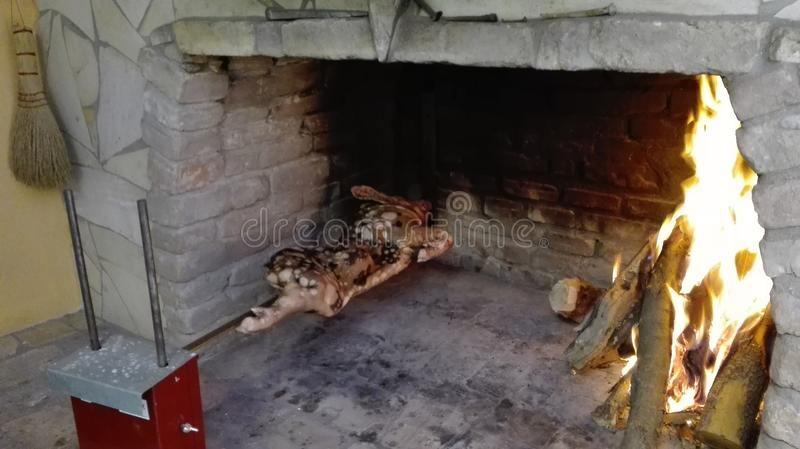 在烹调的撒丁岛小猪 库存图片
