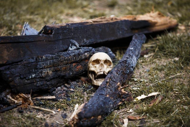 在煤炭中的人的头骨在火的灰 库存照片