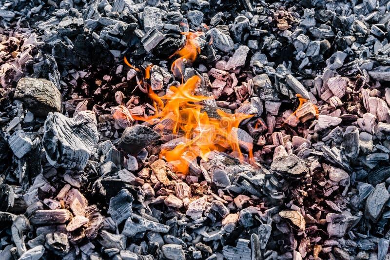 在煤炭平的位置纹理的小火  免版税库存照片