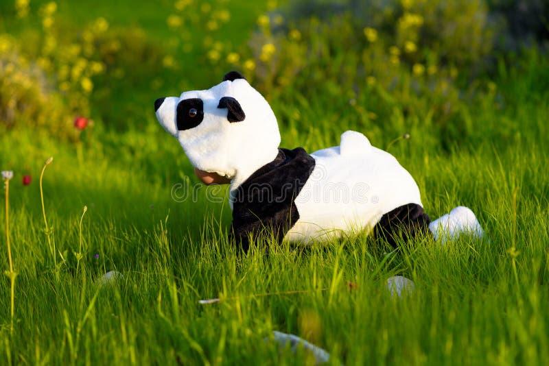 在熊猫服装打扮的可爱宝贝在夏天公园 免版税图库摄影