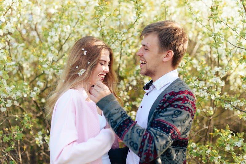 在爱拥抱的一对年轻夫妇以开花的春天樱桃园1为背景 免版税库存照片