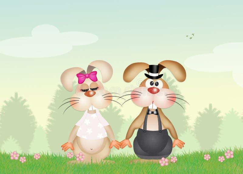 在爱的兔宝宝 库存例证
