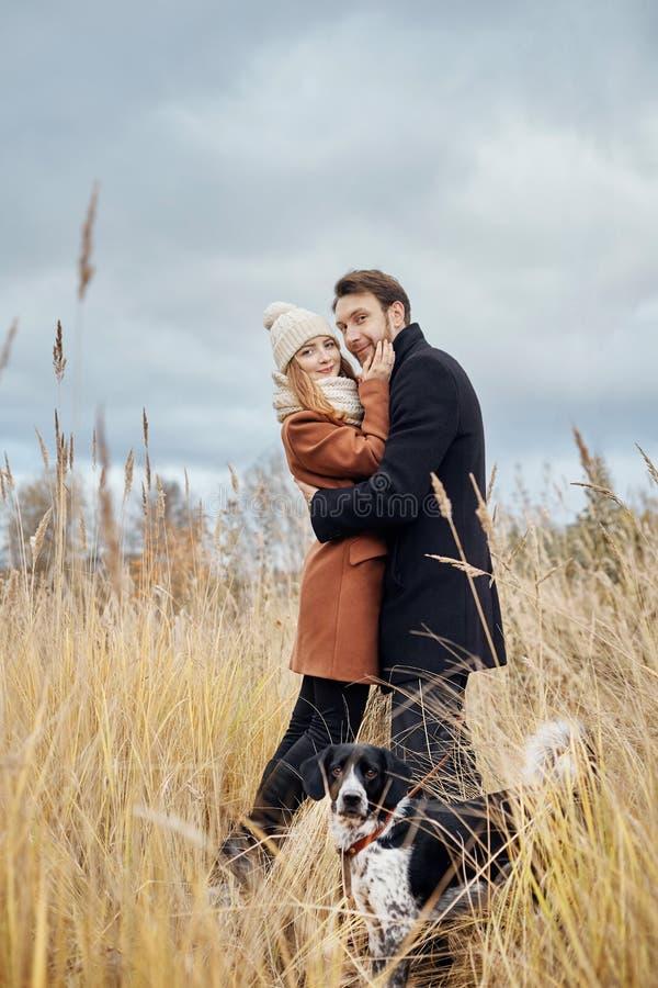 在爱的夫妇在一温暖的秋天天在有一个快乐的狗西班牙猎狗的公园走 爱和柔软在男人和妇女之间 免版税图库摄影