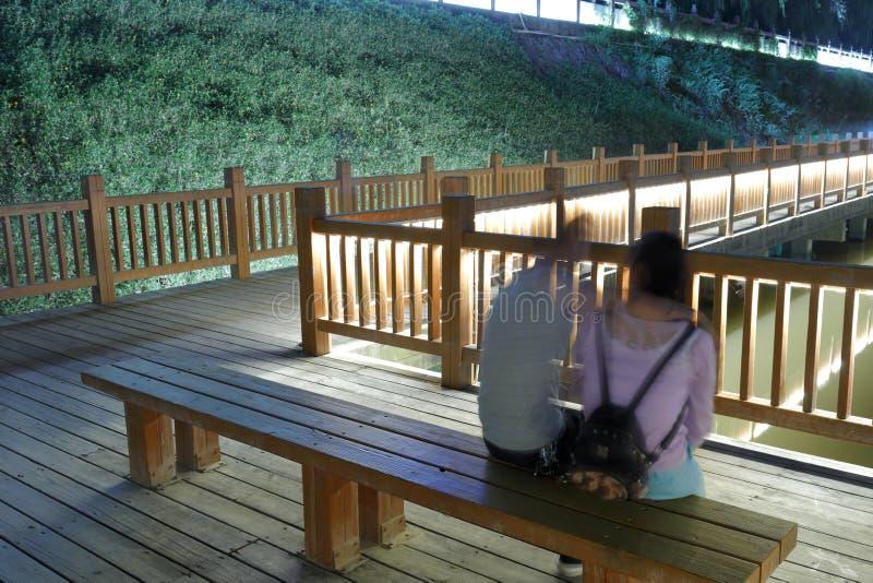 在爱的夫妇在长凳在晚上 库存照片