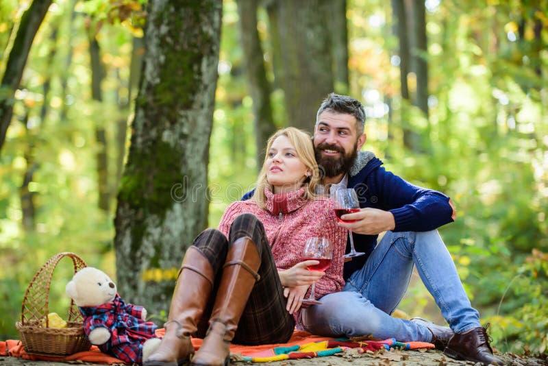 在爱的夫妇庆祝周年野餐日期 结合拥抱的饮用的酒 享受他们完善的日期 ?? 免版税库存图片
