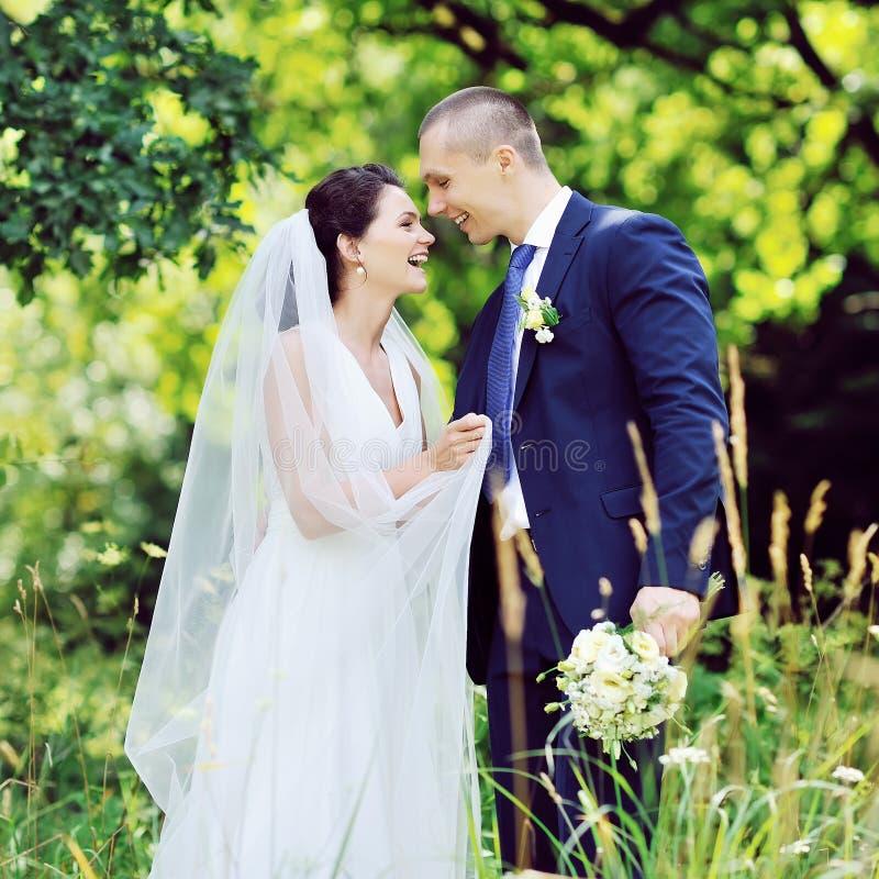 在爱的美好的微笑的婚礼夫妇 户外纵向 免版税库存照片