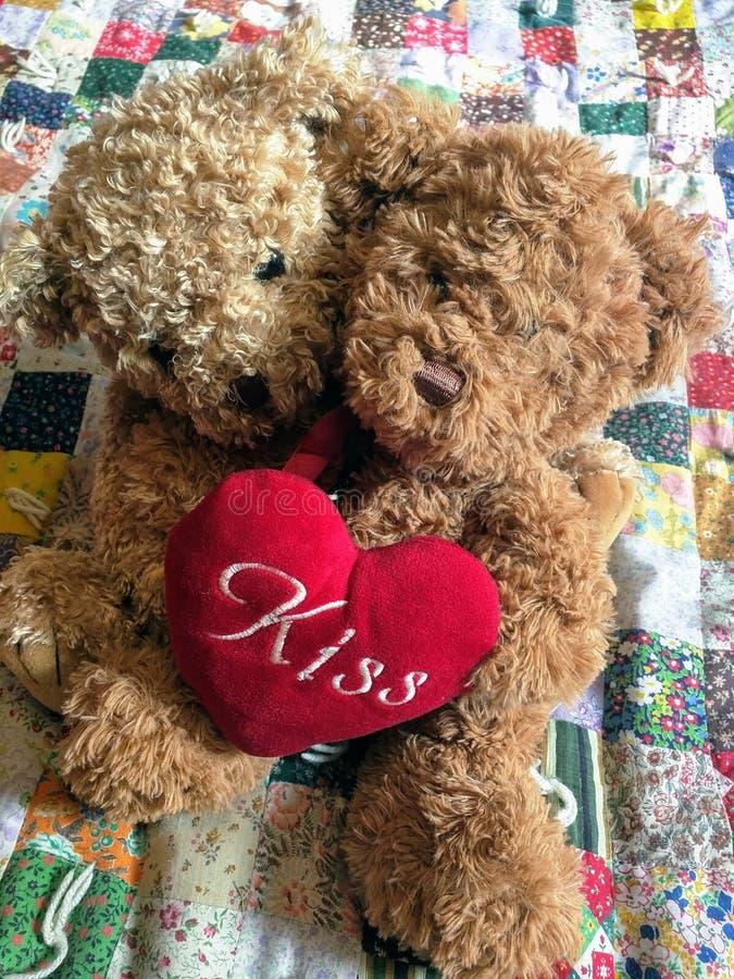 在爱- Valentine& x27的玩具熊;s天熊 库存图片