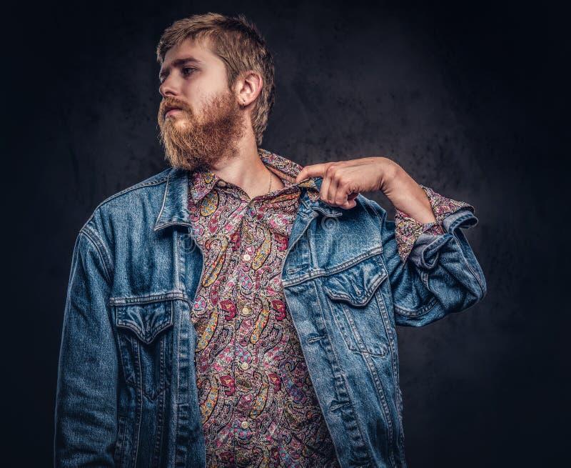 在牛仔裤夹克打扮的有胡子的行家人感到难受并且把在黑暗的背景的衬衣衣领向后拉 免版税库存图片