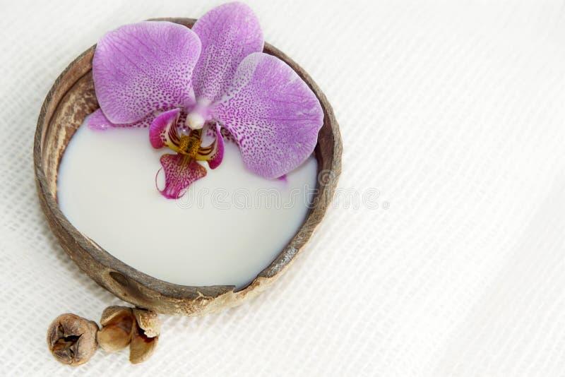 在牛奶的兰花花在轻的背景的一个椰子,温泉治疗的准备,松弛大气,明信片 免版税库存照片