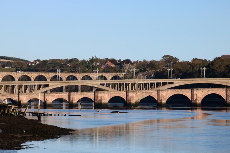 在特威德河的桥梁,贝里克,诺森伯兰角 免版税库存照片