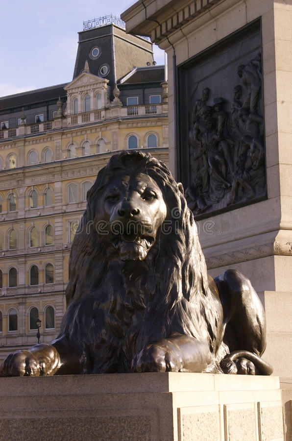 在特拉法加广场的狮子 免版税库存照片