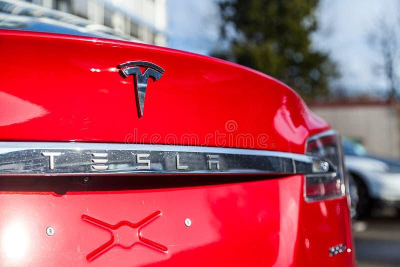 在特斯拉汽车的特斯拉商标 免版税图库摄影