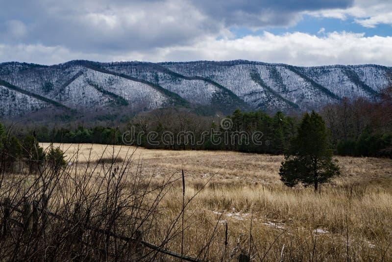 在特森山的冬天从克雷格小河消遣地区 库存照片