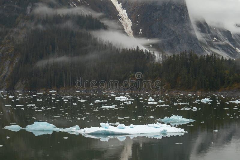 在特雷西胳膊海湾的风景在阿拉斯加美国 库存图片