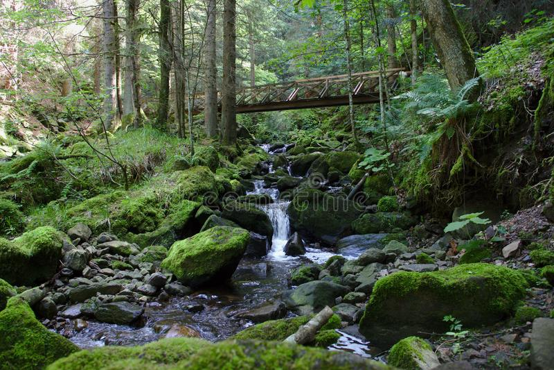 在狂放的河的木桥梁Ravennaschlucht的 库存照片
