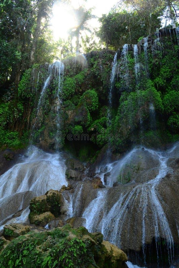 在狂放的热带森林El Nicho瀑布的瀑布,古巴 免版税库存图片