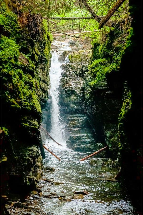在狂放的自然的美丽的瀑布 免版税库存照片