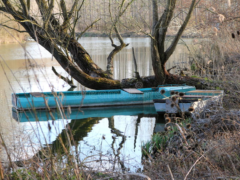 在狂放的自然的老小船 库存图片