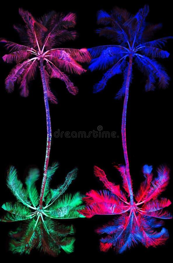 在狂欢节的多彩多姿的棕榈 免版税库存图片