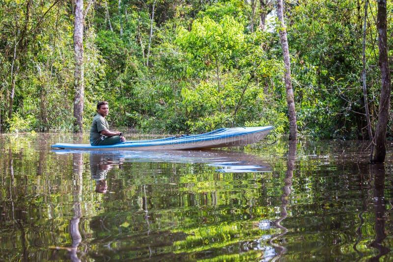 在独木舟的密林指南 库存照片